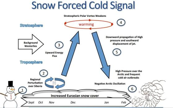 snowcover_infographic